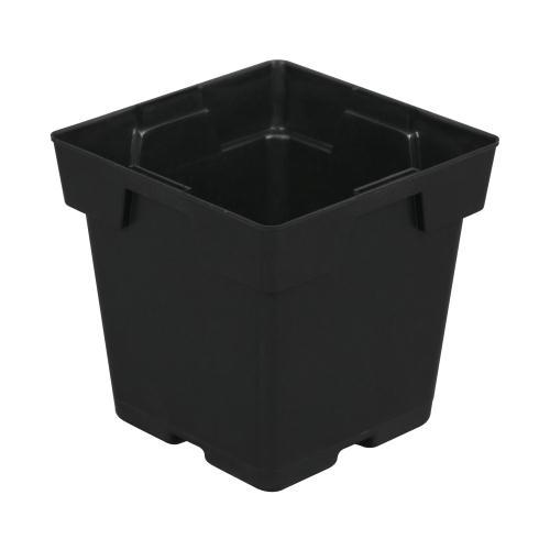 Black Square Pot (Jumbo) 5 in x 5 in x 5 in (200/Cs)