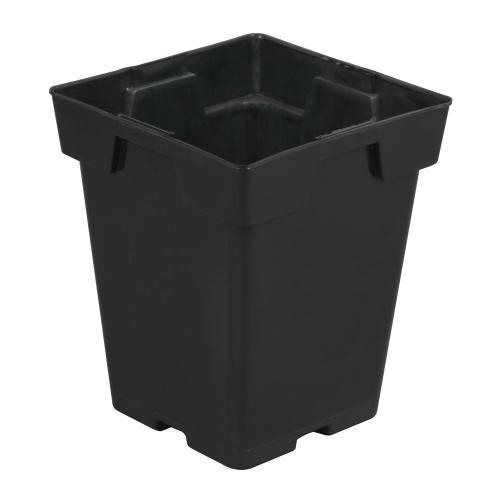Black Square Pot (Magnum) 6 in x 6 in x 7 in (150/Cs)