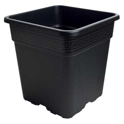 Black Square Pot 1/2 Gallon