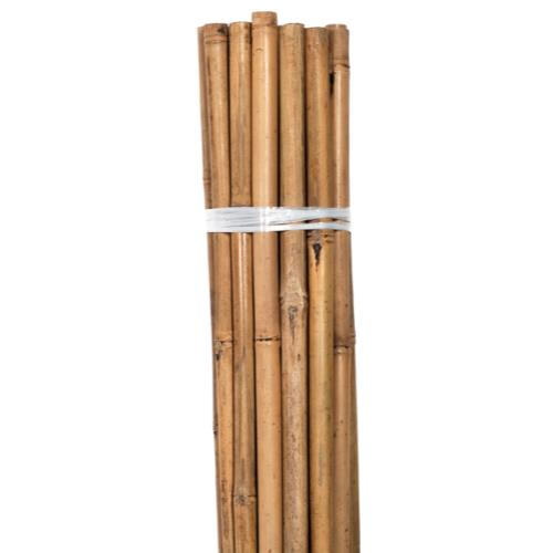 Bond Natural Bamboo HD Stakes 8 ft (5/Bag)