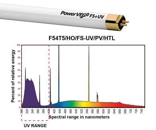 Eye PowerVEG FS-UV 2 ft 24W HO T5 (24/Cs)